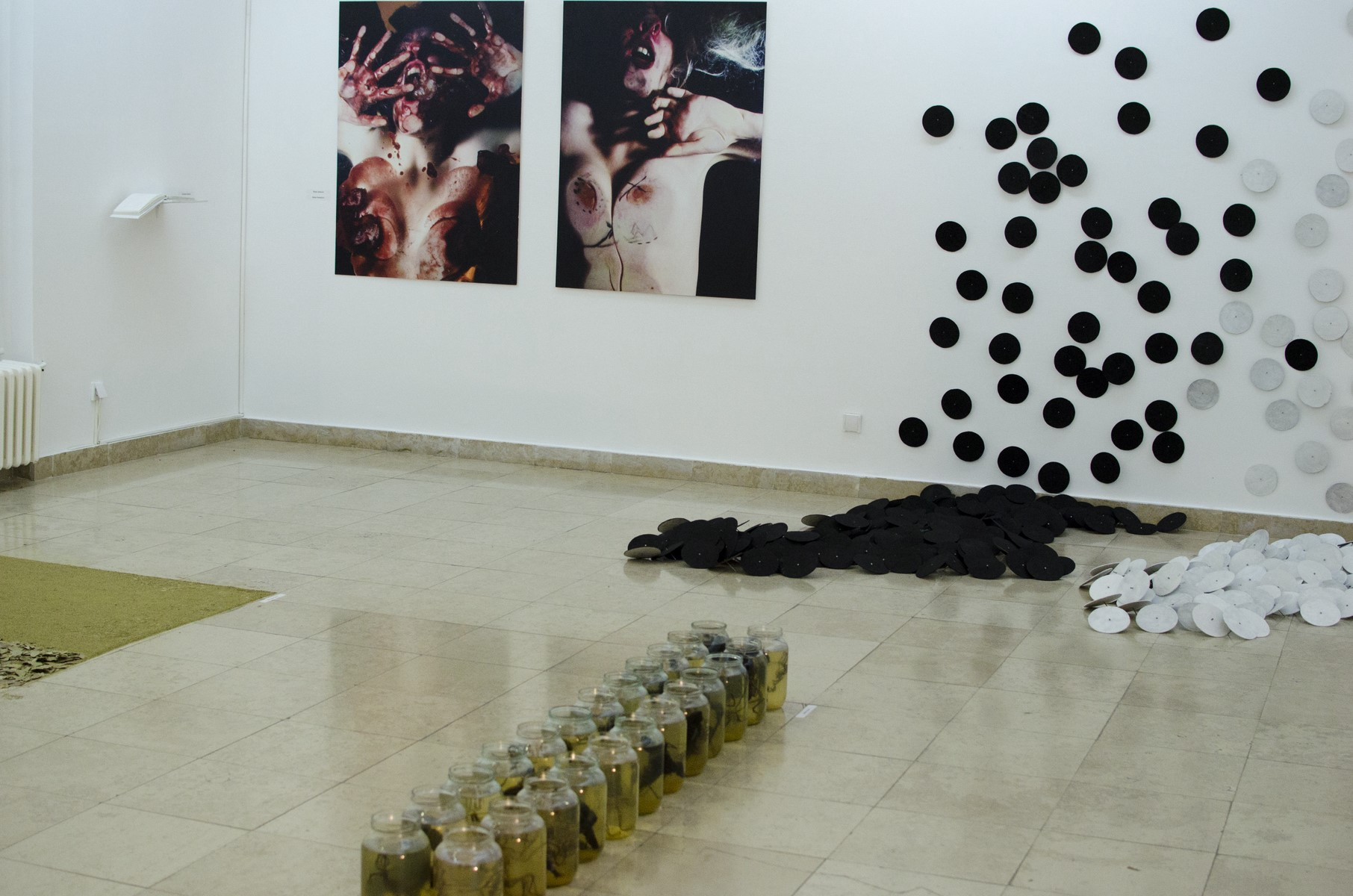 Projekat Razlike 2011